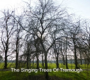 Confluence 2013 - The Singing Trees of Tremough by Stanza May 2013